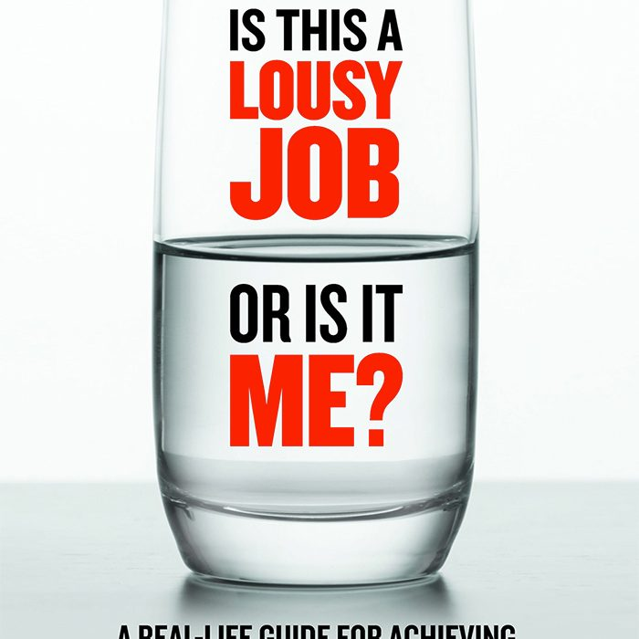 Is this a Lousy Job or is it Me? front cover